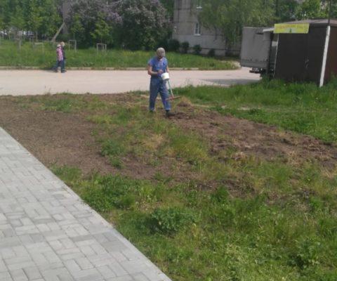 Работы по озеленению и благоустройству